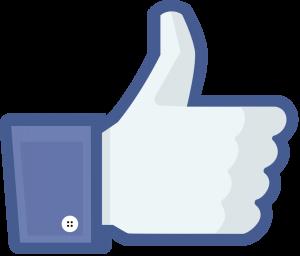 Cambio de algoritmo de Facebook, Blog mutante digital